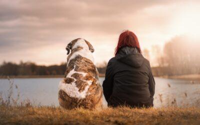 Hjælp og støtte til dig som oplever ensomhed